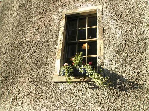 window 02.