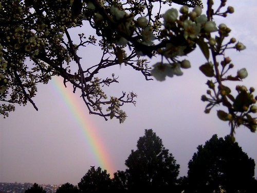 100420--Rainbow