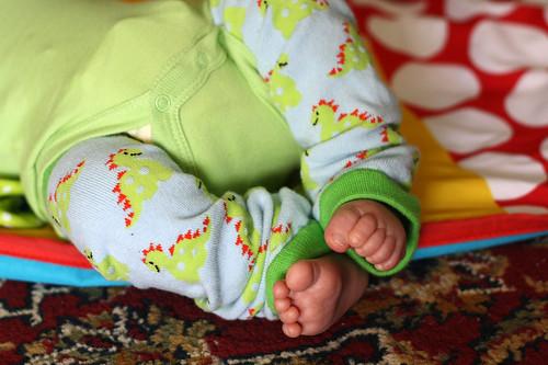 Baby leg warmers.