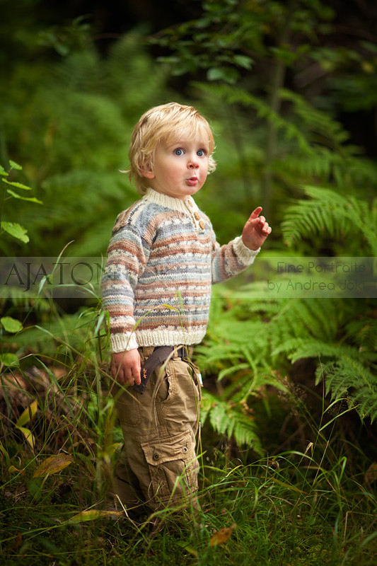 forest ferns portrait boy