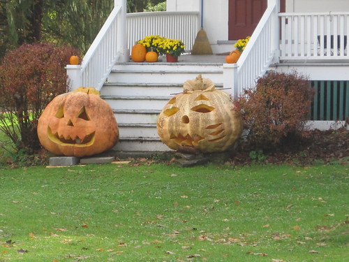 check out these pumpkins!