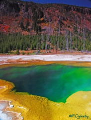 Emerald Pool (P. Oglesby) Tags: autumn landscapes emeraldpool yellowstonenp thehighlander godlovesyou coth supershot absolutelystunningscapes dragondaggerphoto coth5