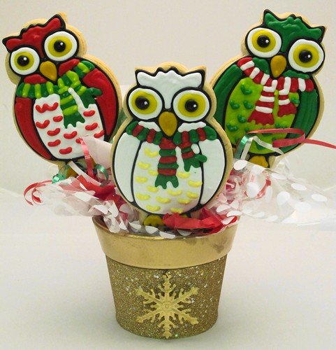 Owls merry and bright
