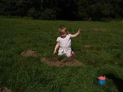 Mole hunt (Tony Lloyd) Tags: baby cute islay mole nottinghamshire sonyh1 clumber clumberpark molehunt
