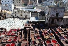 DSC_0086 (AlexutzaO) Tags: maroc fs