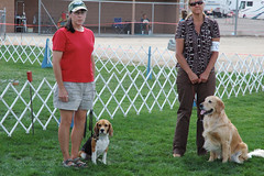 Chino0907-108 (ferragus) Tags: obedience trial connery chinovalley doranna