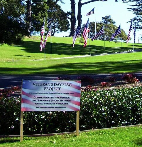 Veterans' Flag Project