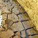 Mud Cave Floor (5579)