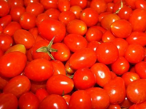 Luscious Tomatoes