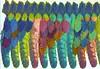 Cultural Stitch Peruvian Parrot feathers
