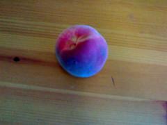 Our lone peach