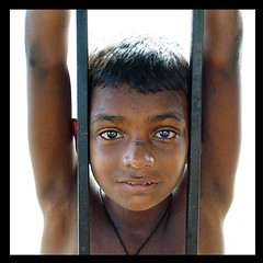 Child Labour (P.C.P) Tags: pcp pcpsk59