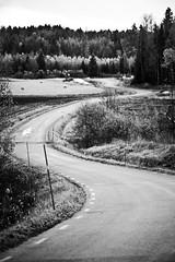 Swirling road (Tommie Ohlson) Tags: road blackandwhite landscape greyscale landskap fotosondag fotosndag svlandskap