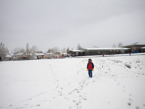 llego la nieve