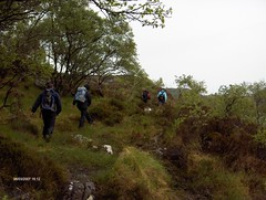 crossing the peat