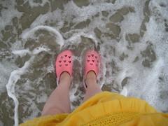 crocs dans l'atlantique