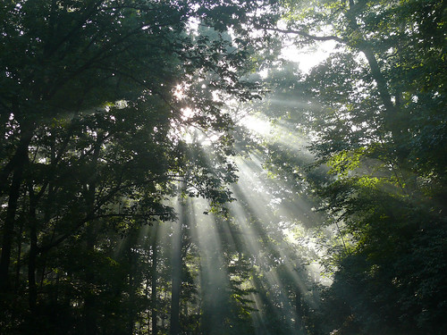 Ηλιακτίδες και άκτιστες ενέργειες του Θεού