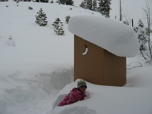 Waiting for the outhouse