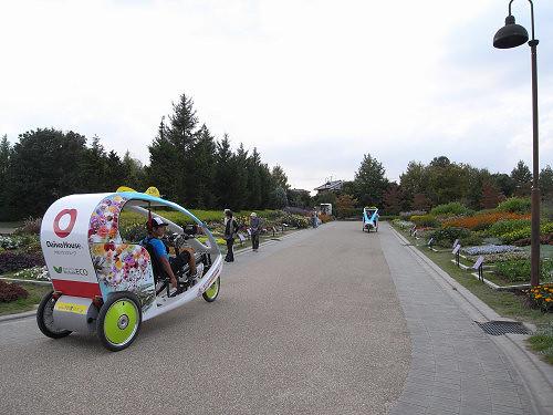 やまと花ごよみ2010@馬見丘陵公園-11