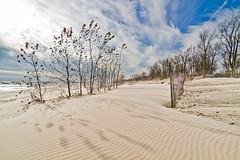 Long Point Provincial Park, Lake Erie, Ontario (Christopher Brian's Photography) Tags: blue autumn trees sun sunlight ontario canada fall beach water clouds sand lakeerie longpoint longpointprovincialpark canoneos7d tokina1116mmf28