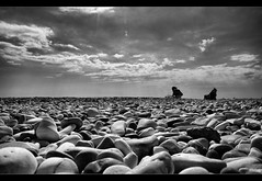 "Sea Stones (Polis Poliviou) Tags: sea summer people bw woman mer seascape hot beach nature water monochrome lady swimming swim mar blackwhite sand agua rocks meer wasser mare stones cyprus wave mari environment su acqua deniz mediterraneansea seaview thalassa polis zypern shootingstar larnaka leau seastones море whitestones chypre θάλασσα brilliantphoto photographyrocks dekelia воды seaspace νερό lovecyprus shining★star goldstaraward afiap mediterraneanisland κυπροσ λαρνακα superaward ""flickraward"" poliviou polispoliviou monochromeaward notwithoutmycamera artistefiap πολυσ πολυβιου nosinmicámara οροκλινη cyprusinyourheart ©allrightsreservedbypolispoliviou οroklini δεκελεια"