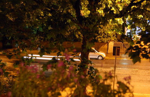 Out My Window night time