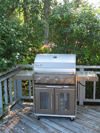 our new grill from costco