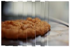 cookie break '. (okkyn') Tags: macro yummy soft iso400 f22 shallowdof 130s handeld fix35mm thebakerystory macadamiaisgoodforyou