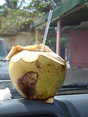 Coco Frio Isla Verde Puerto Rico (raniel1963) Tags: puerto puertorico rico isla islaverde isladelencanto portorico borinquen cocofrio raniel1963raniel1963raniel1963