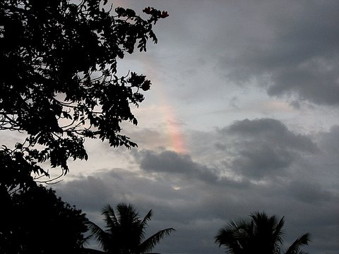 the smallest rainbow 250907