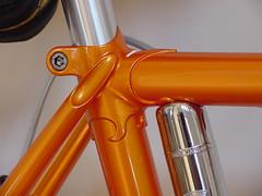 seat cluster (edbraley) Tags: rambouillet rivendell suntour