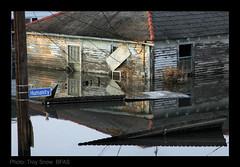 New Orleans Flood~ Humanity Street (Troy Snow) Tags: katrina nikon flood neworleans hurricanekatrina animalrescue nola nikkor notleftbehind photobytroysnow