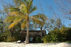 DSC_5118 (Alex Correia) Tags: praia frias silva 2010 moambique pemba sousa d4 quirimbas matemo