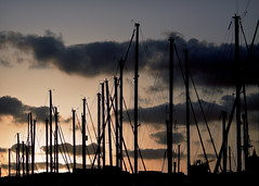 Masts at dusk (steven_kelly | www.steven-kelly.co.uk) Tags: barcelona sunset sky silhouette clouds port photography spain harbour dusk catalonia mast masts portvell espagnol stevenkelly