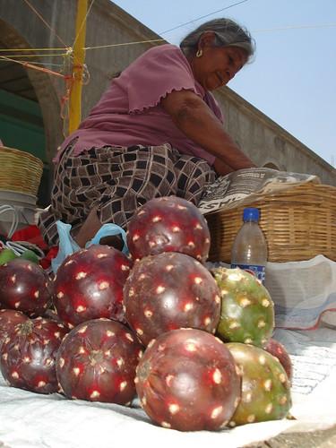 las pitayas en mexico editado