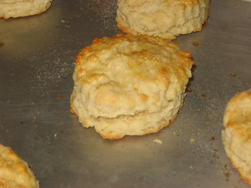 Biscuit for Strawberry Shortcake
