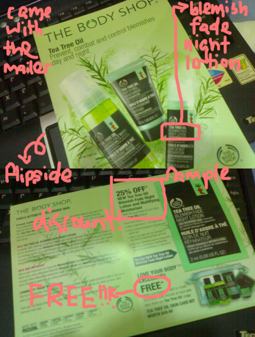body shop flyer