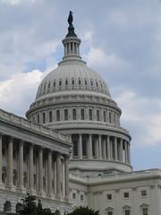 IMG_2118 (michael40001) Tags: usa america washingtondc washington capitol amerika capitolhill thecapitol usgovernment districofcolumbia captialoftheusa