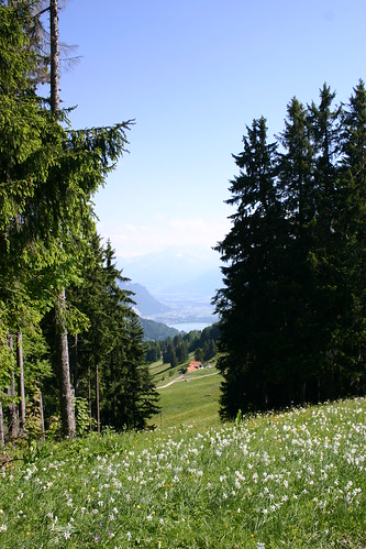 Switzerland in Spring