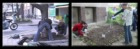 People Actively Guerilla Gardening