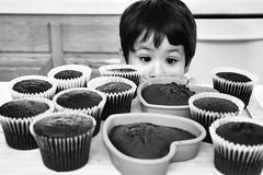 12 chocolate cakes (fd) Tags: family bw love cake baking chocolate son dozen