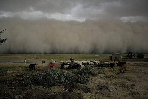 1328840826 34a60e2278 Sand Storms!