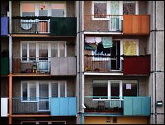 Plattenbau (sulamith.sallmann) Tags: house building window balkon fenster vivid haus polen bauwerk gebäude challenger bunt leben fenetre balkony balkone finestre xyz swinemünde alltag wohnen wohnhaus swinoujscie zi0 sulamithsallmann po0