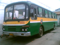 BOTSC 88O4 (Bus Ticket Collector IV; Love Bike, Save Gas ) Tags: bus pub philippines hyundai malinta vintagebus diehards kbus pbpa botsc busoperatorstsc philippinebusphotographersassociation