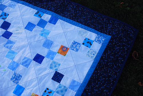 The Birds and the Bee Irish Chain Quilt