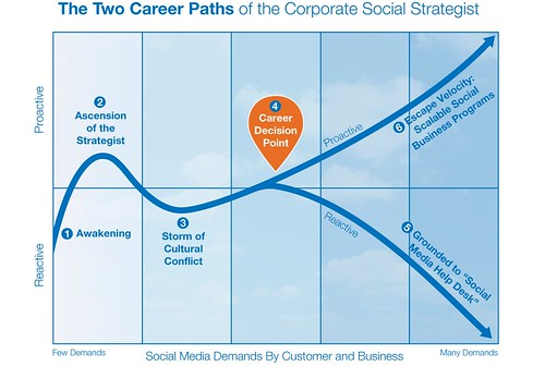 The Two Career Paths of the Corporate Social Strategist