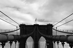 Head (BW) (A@lbi) Tags: nyc newyorkcity bridge bw newyork brooklyn america unitedstates head sigma m lbi wires brooklynbridge canon350d sigma18200mm