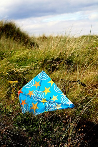lost kite -- kite lost dunes stevenston ayrshire grasses scotland northayrshire north