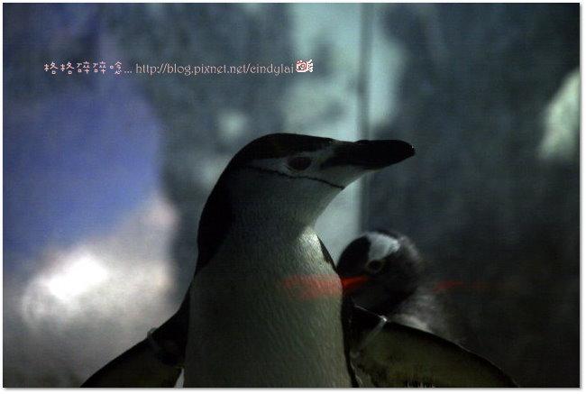 Kenting_2007_0915_112511