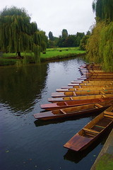 uk inglaterra cambridge england river unitedkingdom cam 2007 punts reinounido punter licensed flickrexplore explored myexplore río 200709 geo:dir=185 myexplored scenicsnotjustlandscapes geo:lat=52201944 geo:lon=0115278